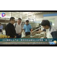 """CCIC溯源认证产品-泰国乳胶品牌DGD入驻泰国""""泰1号店"""""""