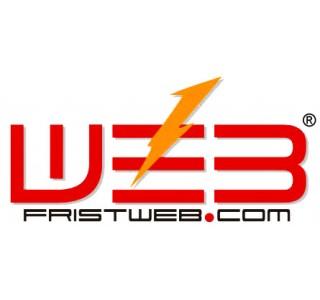 fristweb 企业网站年服务=国际域名